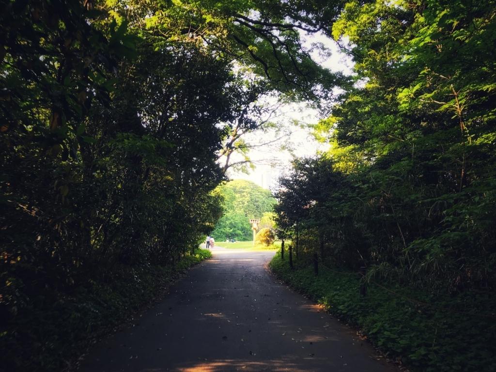 f:id:Nakajima_IT_blog:20180501170124j:plain