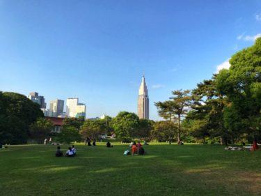都会のオアシス 明治神宮の芝生で美しい午後のひとときを。