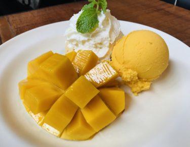 タイ一人旅  第3章 歴史と美味しいご飯を堪能